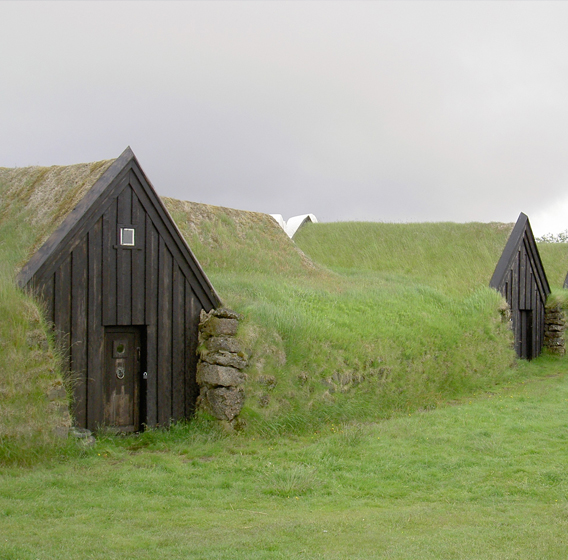 Wood and grass houses