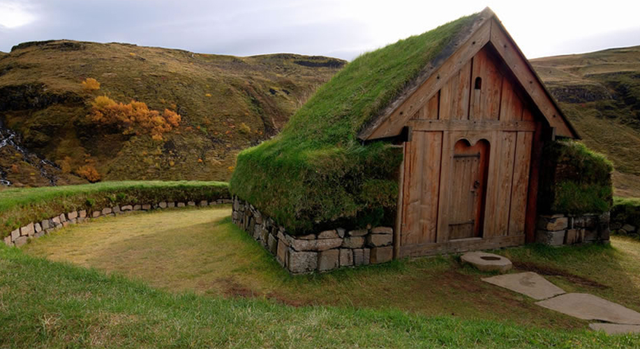 Wood and grass: The need for sustainability