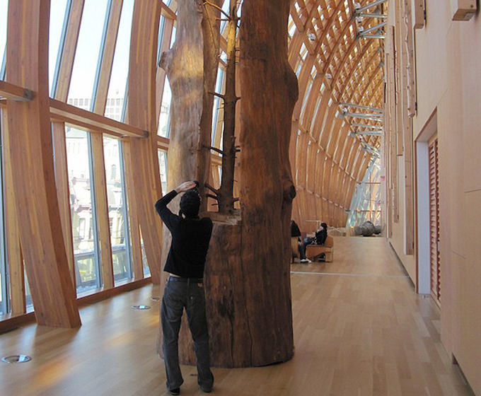 La madera en la obra de Giuseppe Penone